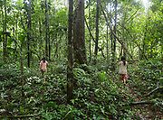 Albania (14 ) and her sister Emiliana (12) go out foraging in the jungle. They eat seeds of a cojnono tree, knocked askew when their father felled a 50-foot high ochoo tree to build a canoe.