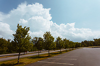 https://Duncan.co/clouds-trees-and-parking-lot