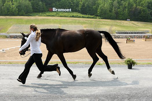 Lindsay Beer and Karma at the Bromont Three Day Event in Bromont, Quebec, Canada.