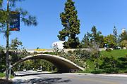 Bridge Tunnel on Peltason Drive on  Campus of the University of California Irvine