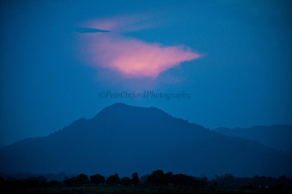 Kanaku Mountains<br /> Nappi<br /> Rupununi<br /> GUYANA<br /> South America