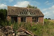 Old Farm Building, which Bats and wild animals may inhabit, overgrown, derelict, broken roof, wood