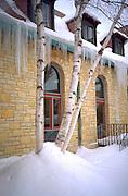 Icicles and birch tree in Unity Unitarian Church court yard. St Paul Minnesota USA