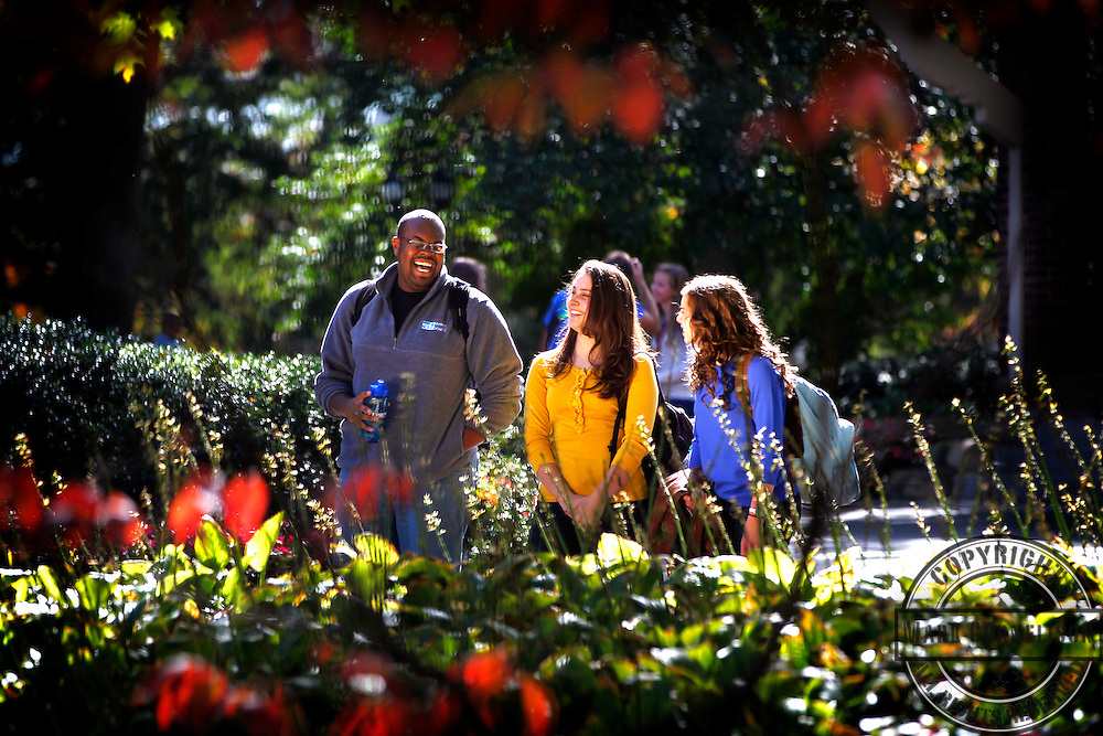 Students enjoy the campus on colorful fall day.