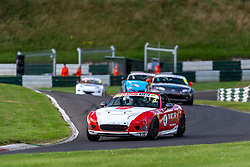 Adam Bessell pictured while competing in the BRSCC Mazda MX-5 SuperCup Championship. Picture taken at Cadwell Park on August 1 & 2, 2020 by BRSCC photographer Jonathan Elsey