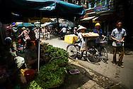 Vender sells fresh green vegetables at Ngoc Ha market, Hanoi, Vietnam, Southeast Asia