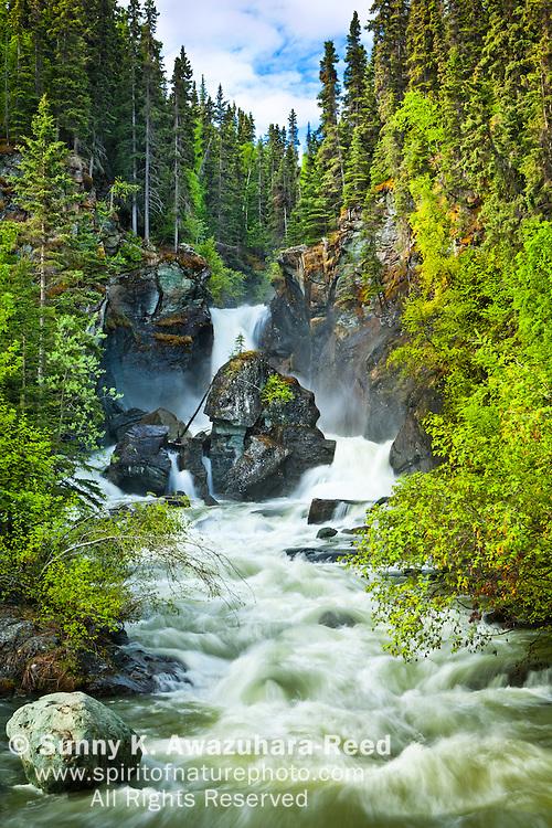 Liberty Falls rushing down among fresh green foliage at Liberty Falls State Campground near Chitina, Southcentral Alaska, Summer.