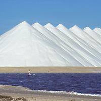 Piles of raw salt, industry, storage, organic salt, natural