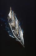 Naval Cadet Ship