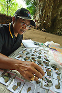 """ARKENAS researcher Jatmiko is charged with measuring and describing the thousands of stone tools recovered from digs at Liang Bua, discovery site of the """"Flores hobbit"""" (Homo floresiensis)"""