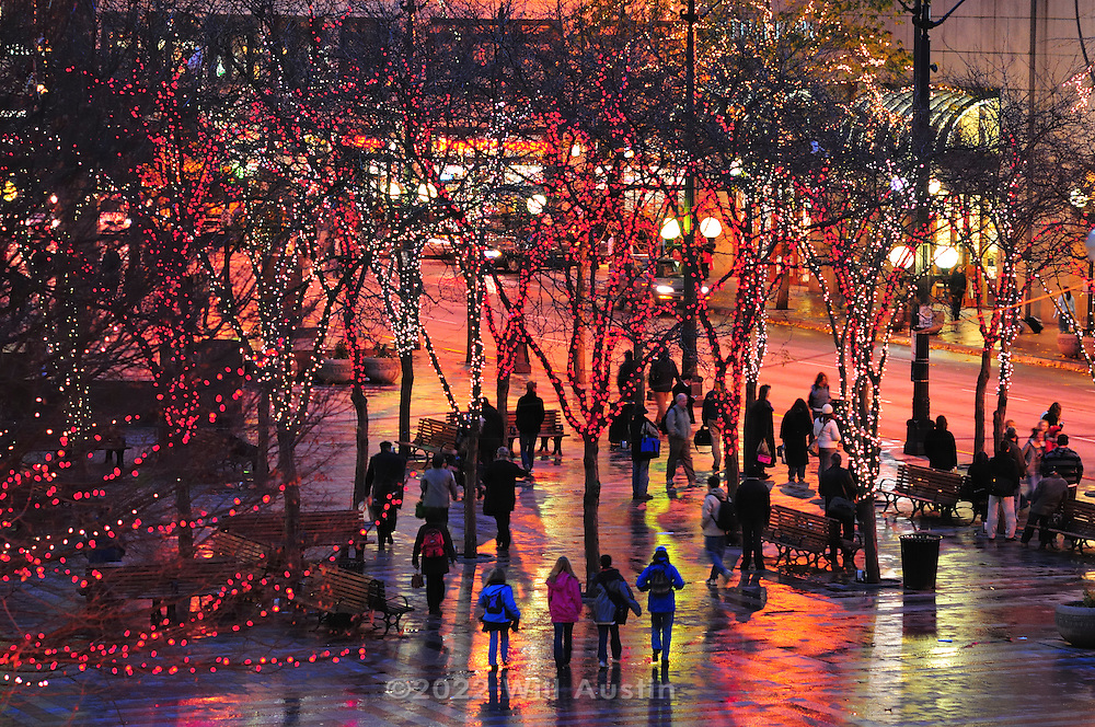 View of Seattle's Westlake Park during the winter