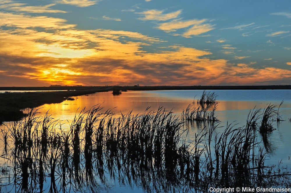 Wetland at sunset<br /> Tuxford<br /> Saskatchewan<br /> Canada