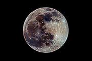 Last full moon of 2020, Tuesday, Dec. 29, 2020, in Nashville, Tennessee. (Wade Payne/www.wadepaynephoto.com)