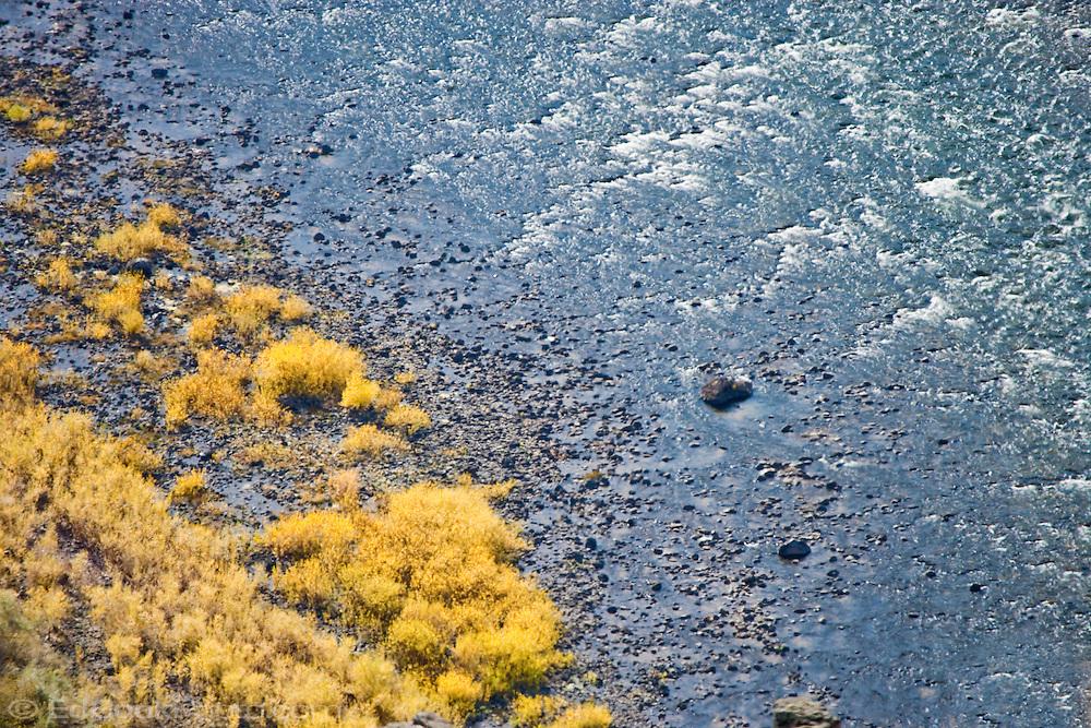Autumn grasses and bushes along the Grande Ronde River, Blue Mountains, Asotin County, Washington, USA