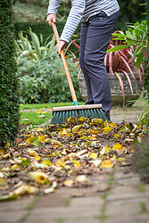 Sweeping up leaves from a path with a broom