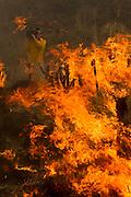 A cameraman record the wildfire burning along the PCH at Point Mugu Friday, May 3, 2013..(AP Photo/Ringo H.W. Chiu)