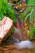 Cascade in Zion Canyon, Zion National Park, Utah