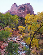 Canyon Stream in Zion Canyon near Court of the Patriarchs, Zion National Park, Utah