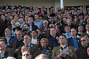 THIRD  RACE, Cheltenham races,  Ladies Day, Wednesday 15 March 2017