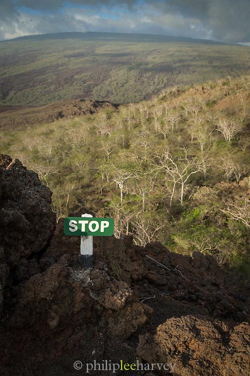 The end of a trail, Isabella Island. Galabagos, Ecuador, South America