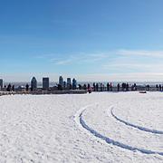 Mont Royal at winter