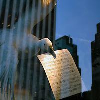 Bird with Sheet Music