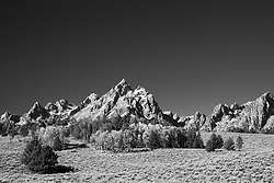 """The Sagebrush plain and aspen grove accent the grandure of the Grand Tetons in Grand Teton National Park.<br /> <br /> For production prints or stock photos click the Purchase Print/License Photo Button in upper Right; for Fine Art """"Custom Prints"""" contact Daryl - 208-709-3250 or dh@greater-yellowstone.com"""