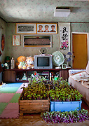 AIRBNB IN NORTH KOREA<br /> <br /> When I first arrived in North Korea in 2008, my guide told me that in the near future it may be possible for tourists to lodge with a North Korean family during their stay. I had to wait years before this sort of North Korean Airbnb came into existence so I'm thrilled when they finally tell me that I could do it. During my stay, I'll be a guest at the residence of a local fisherman's family in the village of Jung Pyong Ri, in Myongchon county, situated in the North Hamgyong province. With white sandy beaches, the remote village doesn't exist on any map. This beautiful portrayal of rural life provides the North Korean government a flattering image to capitalize on, showing tourists this pillar of the country's economy. <br /> After 5 trips to North Korea, I'm always a tad suspicious when my guides tell me something is amazing. They regularly oversell events I should attend or places I should visit. In the past, I was brought to a fish farm without fish and a host of abandoned factories. Hopefully, this time will be different and Jung Pyong Yi will live up to its hype. <br /> My journey there gives me a great opportunity to view the countryside, as it requires a several-hour bus ride to reach. The roads on the east coast are very muddy and filled with potholes that workers try their best to fix. I see an electric fence lining the beach as an attempt to stall possible Japanese invasion. <br /> The poverty in these rural villages is palpable. From the comfy seat in my bus, I see old, dilapidated houses with roofs ready to collapse. Only huge murals of the smiling Kim Il Sung bring color to these bleak landscapes. My guide informs me that most tourists do not journey this far into the countryside, and that I may be the first European to ever visit this area. The bus continues on, accelerating every time it passes through a village, aggressively forcing other motorists to make way for the bus. There is a disparaging difference between the attitudes of the