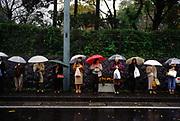 Women in a queue waiting for a bus in the rain, Hakone, Japan