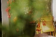 SERIES - UNRLIABLE-SIGHTINGS by PAUL WILLIAMS- Valem Garden