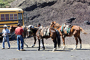 Guides and their horses wait by a bust stop for tourists who want to ride up Volcan de Pacaya. San Francisco de Sales. Republic of Guatamala. 02Mar14