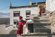 Snow Leopard Expedition - Ladakh