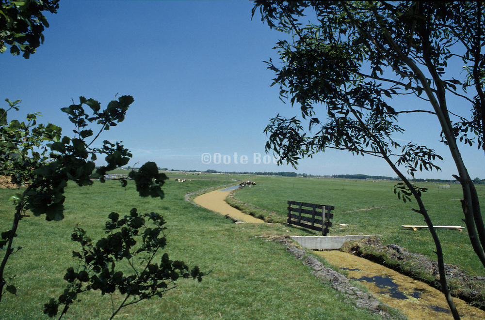 water canal through grassy field