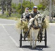 Turkije, Anatolie, 8-6-2011Boer, landbouwer, met vrouw op een wagen en getrokken door een paard.Foto: Flip Franssen