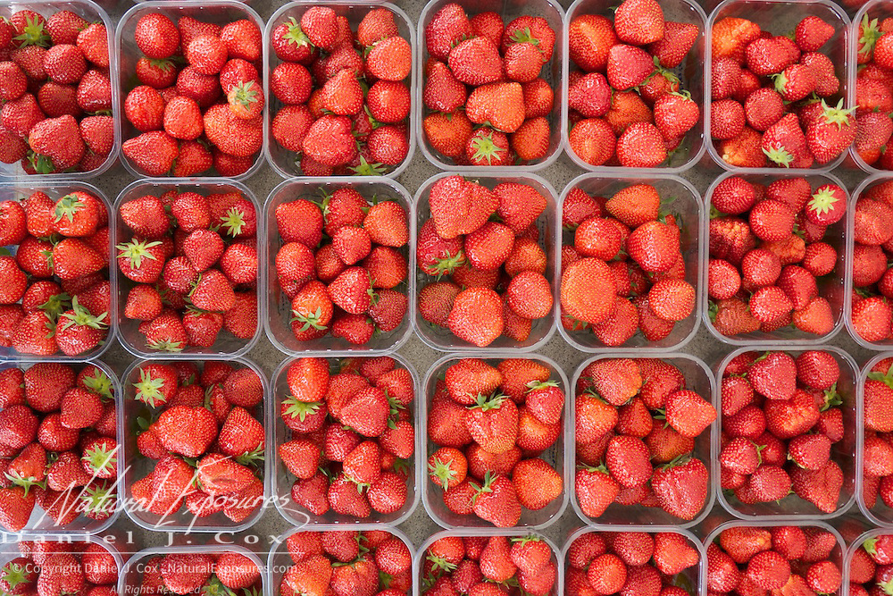 Strawberries at the Galway Farmers Market, Galway, Ireland.