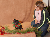 """Jenn Moulton's 8 year old pug """"Jade"""" poses for her portrait with photographer Mary Boudreau at Prescott's Florist on Saturday afternoon with a contribution going to the New Hampshire Humane Society.  (Karen Bobotas/for the Laconia Daily Sun)"""