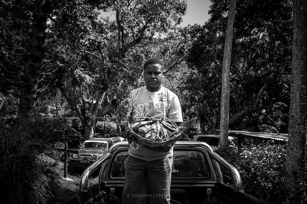 NOUVELLE CALEDONIE, HIENGHENE, Tiendanite - Aout 2013  - Coutume Kanak - Preparation du four traditionnel Kanak pour la cuisson du bougna - Jeune du clan