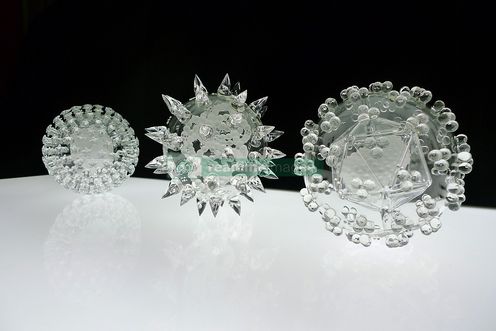 """IN PHOTO: A collection of viruses<br /> <br /> Internationally-renowned British artist Luke Jerram has created a coronavirus glass sculpture in tribute to the huge global scientific and medical effort to combat the pandemic.<br /> <br /> Made in glass, at 23cm in diameter, it is 1 million times larger than the actual virus. <br /> <br /> It was commissioned 5 weeks ago by a university in America to reflect its current and future research and learning in health, the environment and intelligent systems, and its focus on solving global challenges.  <br /> <br /> Luke says: """"Helping to communicate the form of the virus to the public, the artwork has been created as an alternative representation to the artificially coloured imagery received through the media. In fact, viruses have no colour as they are smaller than the wavelength of light."""" <br /> <br /> """"This artwork is a tribute to the scientists and medical teams who are working collaboratively across the world to try to slow the spread of the virus. It is vital we attempt to slow the spread of coronavirus by working together globally, so our health services can manage this pandemic."""" <br /> <br /> Made through a process of scientific glassblowing, the coronavirus model is based on the latest scientific understanding and diagrams of the virus.  <br /> <br /> Profits from this glass model are going to Médecins Sans Frontières (MSF) who will be assisting developing countries deal with the fallout of the coronavirus epidemic. <br /> <br /> This new model is just the latest in Luke's Glass Microbiology series of virus sculptures. Luke and his glassblowing team have, in the past, made other sculptures of viruses from swine flu and Ebola to smallpox and HIV.<br /> <br /> Respected in the scientific community, the glass sculptures have featured inThe Lancet,Scientific American,British Medical Journal (BMJ)and on the front cover ofNature Magazine.  <br /> <br /> TheGlass Microbiologysculptures are in museum collections around"""