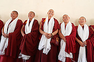 Joy of the Geshemas gathered in Jangchub Choeling Nunnery one day after the first Geshema convocation, Mundgod, India, 23rd of December 2016