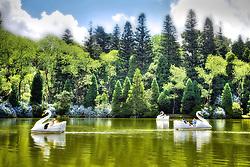 Inicialmente chamava-se de Vale do Bom Retiro. Após um incêndio que arrasou a imensa mata existente na região, Leopoldo Rosenfeldt construiu um lago em 1953, decorando suas margens com árvores importadas da Floresta Negra da Alemanha, daí o seu nome, Lago Negro. Suas águas são profundas e de um verde escuro carregado, refletindo o alto dos pinheiros que se alternam com o colorido das azaléias no inverno e o azul das hortênsias no verão. Um caminho de saibro contorna o lago e serve de trilha para caminhadas. A maior atração do lago são pedalinhos em formato de cisnes, no qual os turistas se divertem passeando por todo o lago. FOTO: Jefferson Bernardes/Preview.com