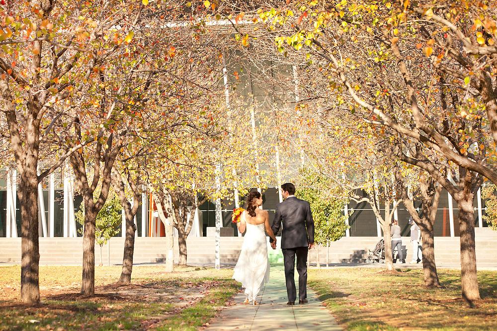 Michelle & Dan's Wedding