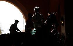 November 3, 2017 - San Diego, CA, USA - Norberto Arroyo Jr. aboard Midnight Pleasure heads out for the third race prior to the Breeders' Cup at the Del Mar Thoroughbred Club on Friday, Nov. 3, 2017.  (Photo by K.C. Alfred/The San Diego Union-Tribune (Credit Image: © K.C. Alfred/San Diego Union-Tribune via ZUMA Wire)