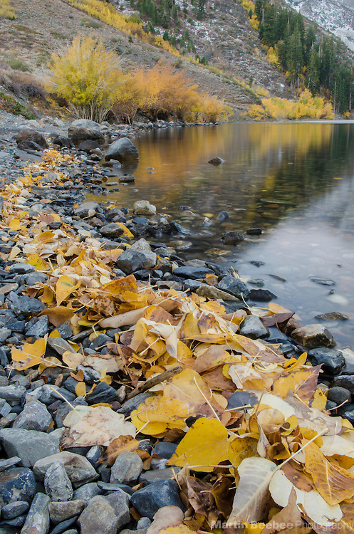 Fall color around Convict Lake, Inyo National Forest, California