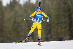Linn Persson (SWE) during Women 15km Individual at day 5 of IBU Biathlon World Cup 2018/19 Pokljuka, on December 6, 2018 in Rudno polje, Pokljuka, Pokljuka, Slovenia. Photo by Ziga Zupan / Sportida