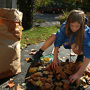 October 28, 2007 -- BATH, Maine.   Isabelle Paulus, 9, helps her grandmother, Karen Bussey, of Bath, to clean leaves out of her driveway on Sunday afternoon after Saturday's rain showers. Isabelle was taking special care to throw away only leaves -- no gravel. Photo by Roger S. Duncan.