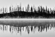curve of the land with trees in reflection.