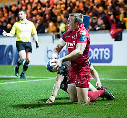 Scarlets' Hadleigh Parkes celebrates scoring his sides second try<br /> <br /> Photographer Simon King/Replay Images<br /> <br /> European Rugby Champions Cup Round 6 - Scarlets v Toulon - Saturday 20th January 2018 - Parc Y Scarlets - Llanelli<br /> <br /> World Copyright © Replay Images . All rights reserved. info@replayimages.co.uk - http://replayimages.co.uk