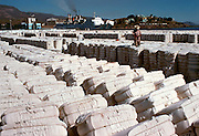 MEXICO, AGRICULTURE Export cotton in harbor, Guaymas