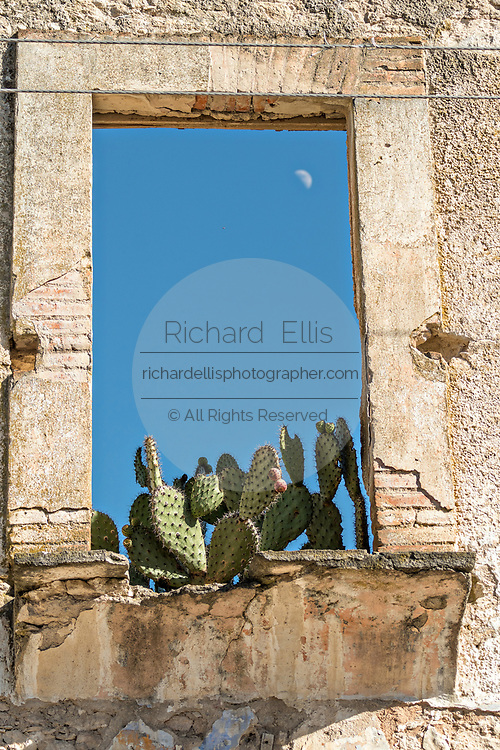 Ruins of an old colonial building with cactus growing in on the window ledge in the ghost town of Mineral de Pozos, Guanajuato, Mexico. The town, once a major silver mining center was abandoned and left to ruin but has slowly comeback to life as a bohemian arts community.