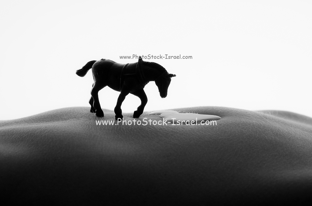 Western Fantasy a miniature toy horse on a nude woman's torso landscape
